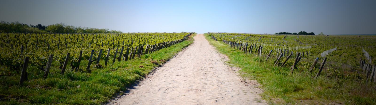 La voie romaine